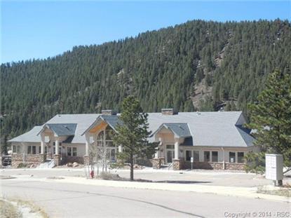 106 E Village Terrace Woodland Park, CO MLS# 3874332