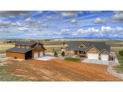 15755 Amo Road Peyton, CO MLS# 3888720