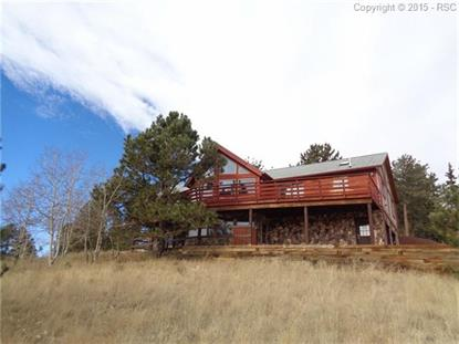 293 Twin Lakes Drive Divide, CO MLS# 3917278