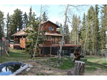 3106 Cedar Mountain Road Divide, CO MLS# 3930228