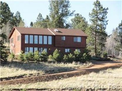 511 Shadow Lake Drive Divide, CO MLS# 3950057
