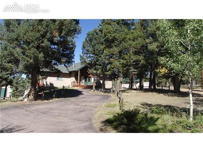 857 County 512 Road Divide, CO MLS# 3963862