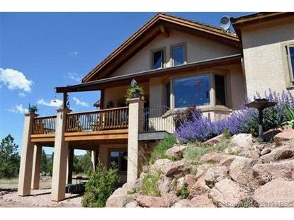 436 Hawk Lane Florissant, CO MLS# 4293522