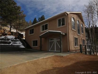 165 Timber Ridge Road Divide, CO MLS# 4298038