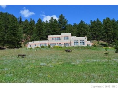 3 Zuni Point Woodland Park, CO MLS# 4342406