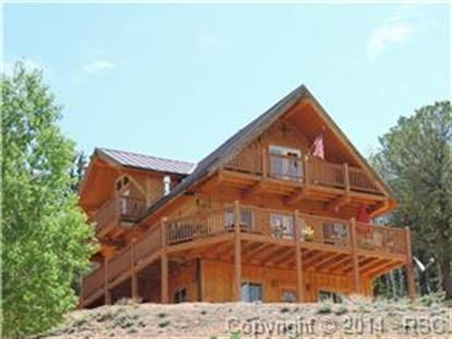 134 Timber Ridge Road Divide, CO MLS# 4377415