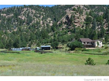 367 Pennsylvania Avenue Florissant, CO MLS# 4398871