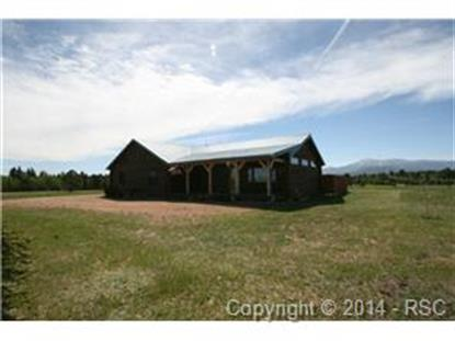949 Aspen Village Drive Divide, CO MLS# 4401437