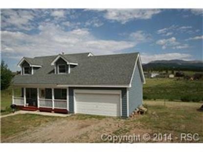 124 Valley View Drive Divide, CO MLS# 4471682