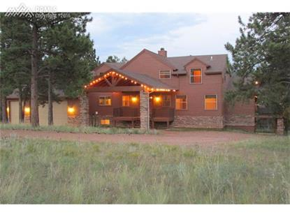 893 Old Ranch Road Florissant, CO MLS# 4488156