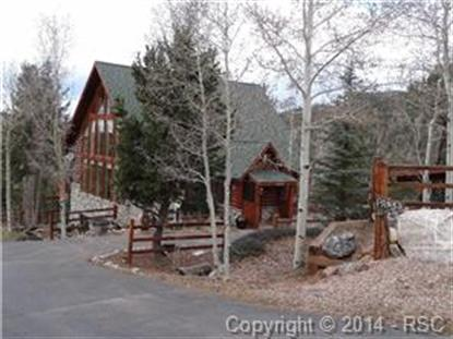 118 Ankerite Lane Divide, CO MLS# 4538864
