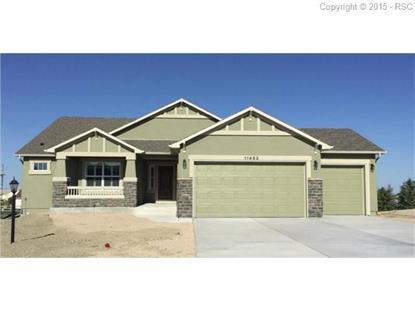 11453 Palmers Green Drive Peyton, CO MLS# 4578585