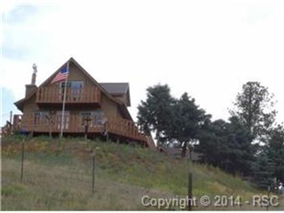 85 Beaver Lake Place Divide, CO MLS# 4594941