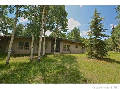 218 Worley Road Divide, CO MLS# 4598454