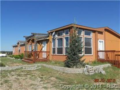 161 Grand View Lane Divide, CO MLS# 4653722