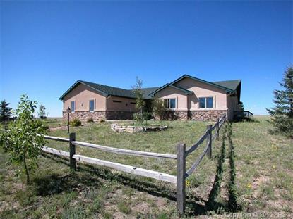 19975 Jones Road Peyton, CO MLS# 4690745