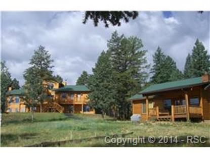 1737 County 782 Road Woodland Park, CO MLS# 4741394