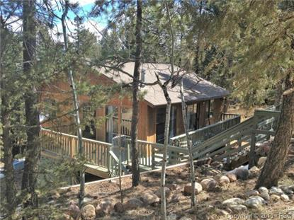 599 Spring Valley Drive Divide, CO MLS# 4837514