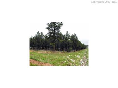 tbd highway 67 Highway Woodland Park, CO MLS# 4973556