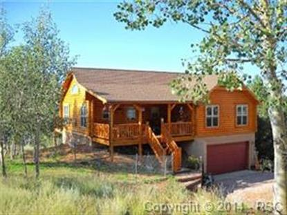 17549 Highway 67 Highway Divide, CO MLS# 5138441