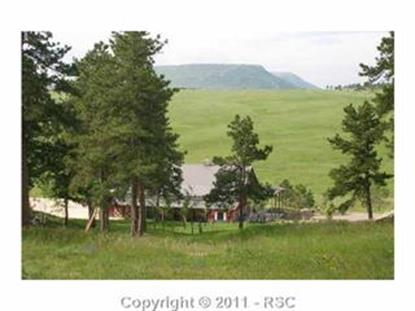 2500  UPPER LAKE GULCH RD, Larkspur, CO