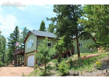 249 Grosbeak Circle Divide, CO MLS# 5221596
