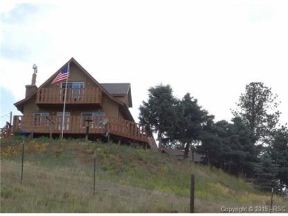 85 Beaver Lake Place Divide, CO MLS# 5228201