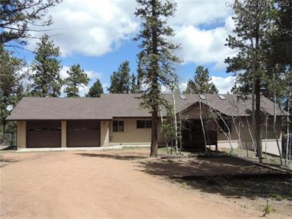 657 Spring Valley Drive Divide, CO MLS# 5452002