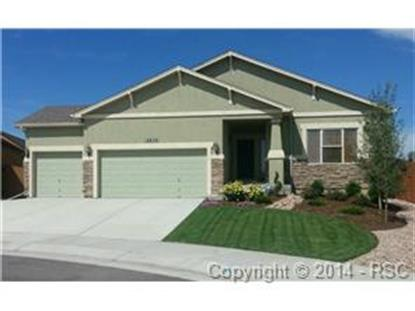 12650 Handles Peak Way Peyton, CO MLS# 5452923