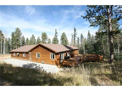 289 Black Bear Drive Divide, CO MLS# 5705259