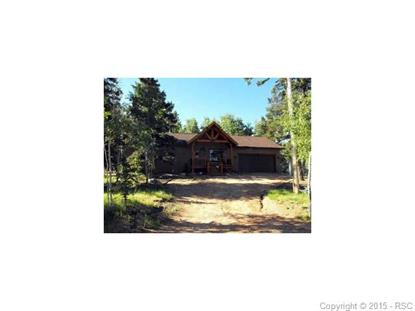 170 Aspen Drive Divide, CO MLS# 5709241