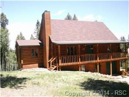 458 Spruce Lake Drive Divide, CO MLS# 5721243
