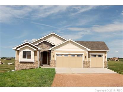12485 Black Hills Drive Peyton, CO MLS# 5725630