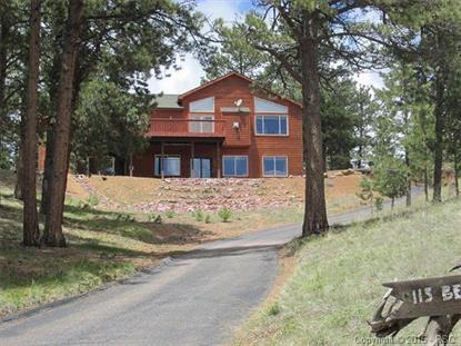 115 Beaver Lake Place Divide, CO MLS# 5774594