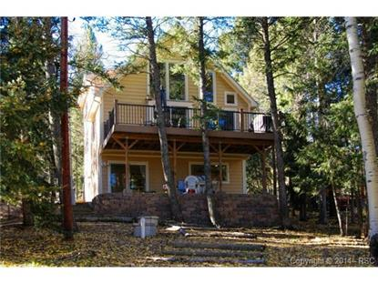 427 Will Stutley Drive Divide, CO MLS# 5812830