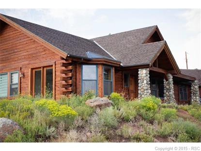 831 Highland Meadows Drive Florissant, CO MLS# 5827394