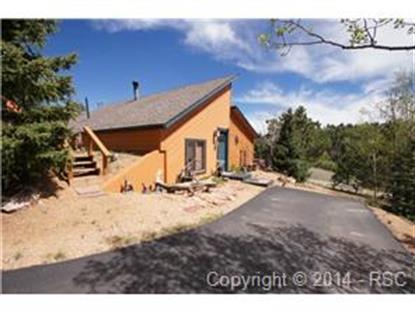 132 Dillon Lake Circle Divide, CO MLS# 5843148