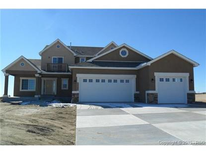 12395 Black Hills Drive Peyton, CO MLS# 5964866