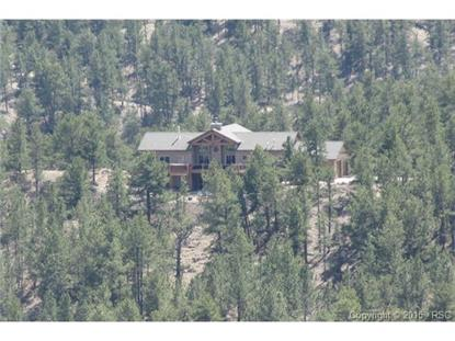 89 CHINOOK Drive Florissant, CO MLS# 6248447