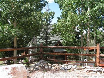 118 Ankerite Lane Divide, CO MLS# 6283536
