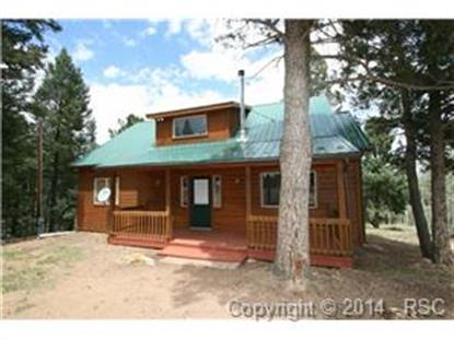 214 Mount Elbert Drive Divide, CO MLS# 6344178