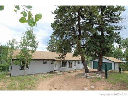 68 Snowhill Road Divide, CO MLS# 6370031