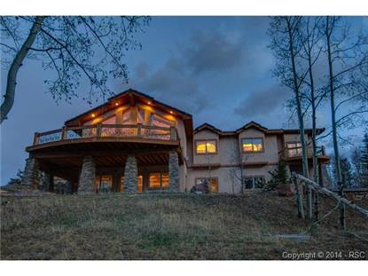 11750 Woodland Road Woodland Park, CO MLS# 6390195