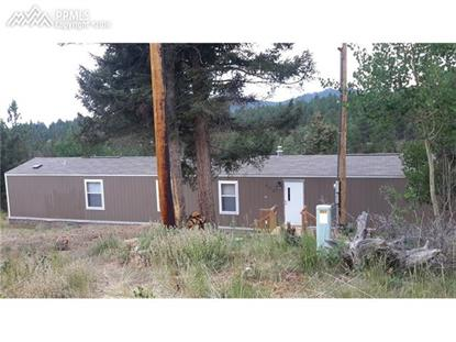 695 Elk Creek Drive Divide, CO MLS# 6411886