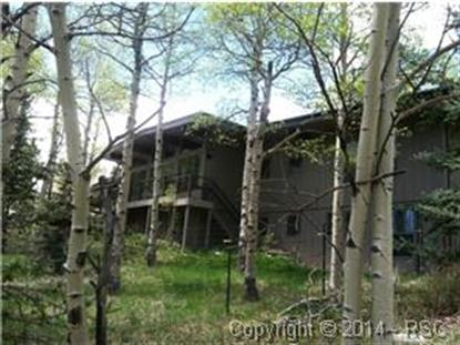 218 Worley Road Divide, CO MLS# 6641121