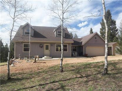 466 Blue Mesa Drive Divide, CO MLS# 6671964