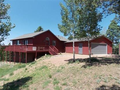 85 Homestead Road Divide, CO MLS# 6809691
