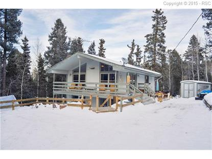 58 Cradle Lake Place Divide, CO MLS# 6904245