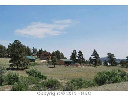 18405 Birds Eye View Peyton, CO MLS# 713247