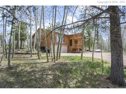 223 Worley Road Divide, CO MLS# 7133649